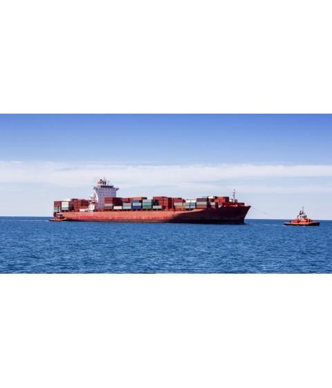 Laevade agenteerimine